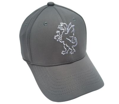 Somerset County Cricket C Somerset CCC Players Cap