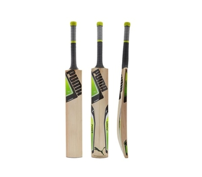 Puma Puma EvoPower 2Y Junior Cricket Bat