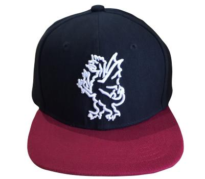 Somerset County Cricket C Somerset CCC 2017 Snapback Cap